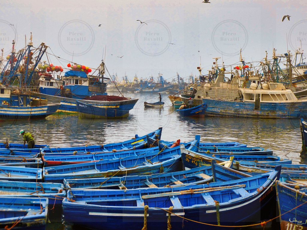 Agadir Fishing Port # 2